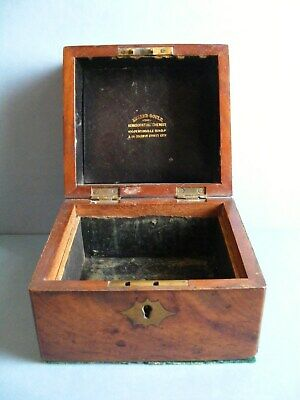 Signed 19thC HOMEOPATHIC Apothecary Chest for Chemist EDWARD GOULD London c1870.