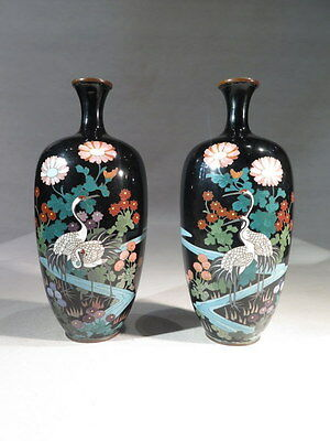 Antique Pair of Vases in Cloisonne Enamel Polychrome Decoration Birds Japan