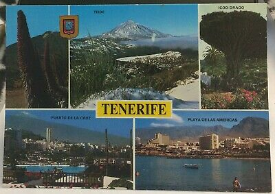 Spain Tenerife Teide Icod Drago Playa de las Americas etc - posted 1995