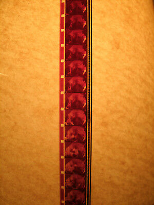 """Collectible Promotional 16Mm Film For """"Freebie And The Bean"""""""