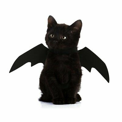 Pet Cat Bat Wings for Halloween Party Puppy Collar Leads Cosplay Bat Costume BD