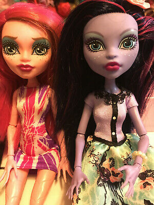 monster high doll lot two dolls bunch of accessories