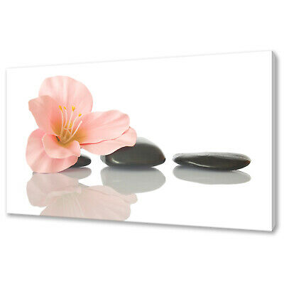 Pink Lily Zen Stones Canvas Picture Print Wall Art Home Spa Decor Free Delivery