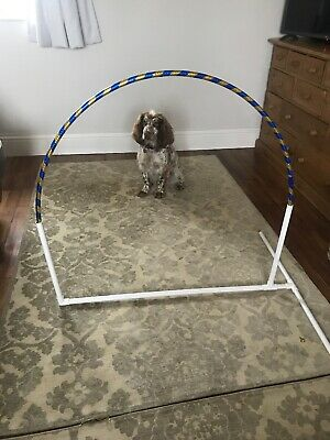 Hoopers Dog Agility Hoops - Max. combined postage of £20