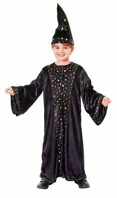 #Child Book Week Wizard Robe Fancy Dress Outfit Halloween All Sizes