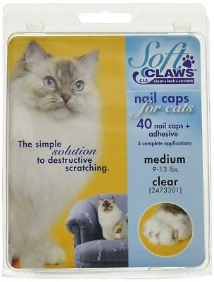 SOFT CLAWS Kit de Protège-Griffes pour Chats Adultes Transparent – M, claire