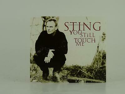 STING, YOU STILL TOUCH ME, 319, EX/VG, 3 Track, CD Single, Picture Sleeve, A&M R