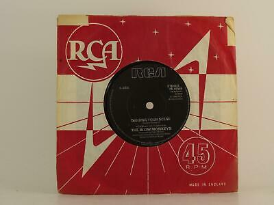 "THE BLOW MONKEYS, DIGGING YOUR SCENE, 92, VG/VG, 2 Track, 7 "" Single, Company Sl"