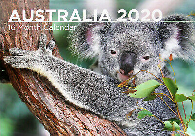 Australia - 2020 Rectangle Wall Calendar 16 Months New Year Christmas Decor Gift