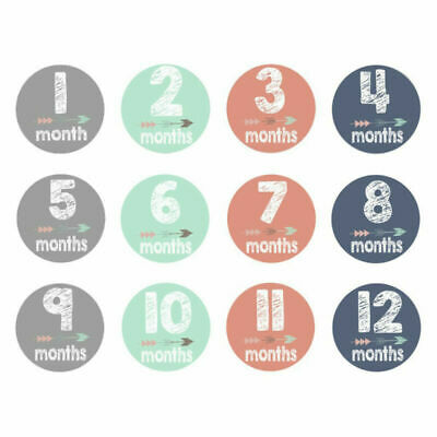Baby Pregnant Women Monthly Photograph Sticker Fun Month 1-12 Milestone Stickers