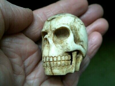 Rare Antique 19Th C Large Carved Bovine Bone Memento Mori Human Skull Netsuke