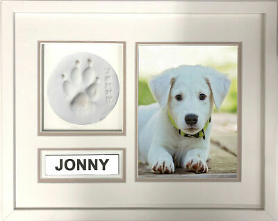 DIY Paw Keepsake Frame Kit - Professional Framing Kit - Easy to Use Kit