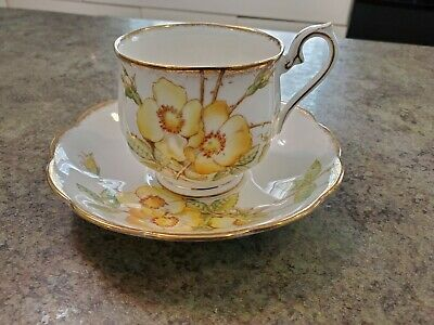 Beautiful Vintage Royal Albert Yellow WILD ROSE England Tea Cup & Saucer Set