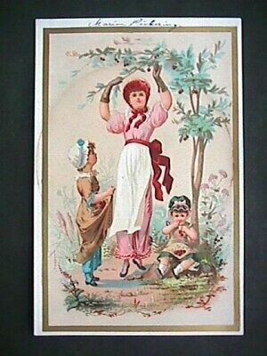 Vtcd211 Victorian Trade Card Collectible Advertising