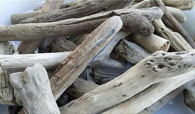 40 QUALITY PIECES OF DRIFTWOOD, BEACH CRAFTS RUSTIC PROJECTS ARTS art decoration
