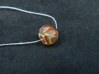 Ancient Etch Carnelian Bead Roman 200 BC No Reserve #BE5029