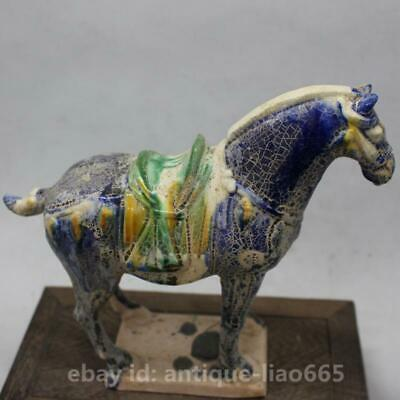 Collect Chinese Ceramics Tri-Color Glazed Pottery Tang Dynasty War-horse Statue