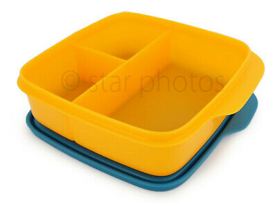 Tupperware Lunch It Divided Lunch Container Lunchit in Papaya - NEW!