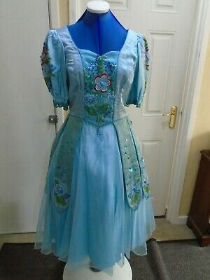 Ladies Bluebell fairy costume small/ Meduim size theatre  pantomime.