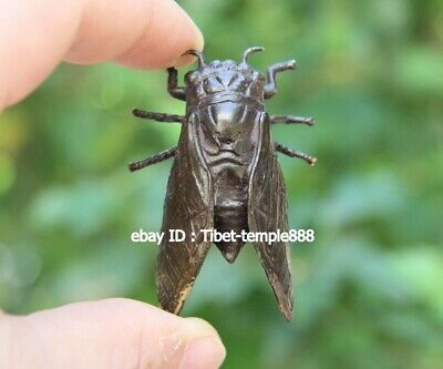 6 cm China Pure Bronze Handwork Lucky cicada insect Animal Amulet Art sculpture