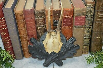 Antique German Black Forest Carved Wood Small Deer Antlers Mount