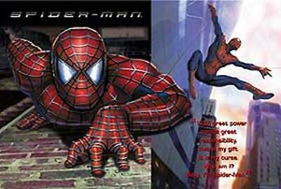 Spiderman (Who Am I?) Poster