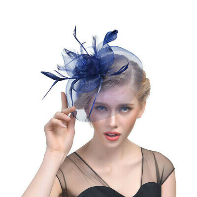 Feather Mesh Netting Fascinator Hat Hair Clip Girl Fashion Stylish  Extravagant