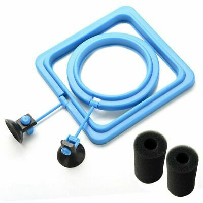 Feeding Ring And Pre-Filter Sponge -Reduces Wastage & Maintains Water Quali N2B4