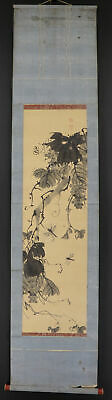 """JAPANESE HANGING SCROLL ART Painting """"Grape and Dragonfly"""" Asian antique  #E8763"""