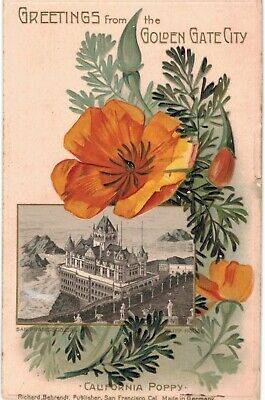 San Francisco Christmas Greetings Golden Gate Cliff House Poppy 2 1910 CA