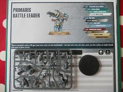Warhammer 40K - Space Wolves Primaris battle leader Haldor Icepelt - 40k bits