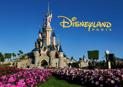DISNEYLAND PARIS - 2x E-TICKETS - 3 Day - Both Parks -All Ages-Expires June 2020