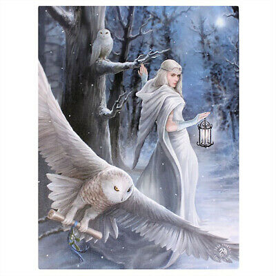 Midnight Messenger Canvas Plaque By Anne Stokes - Goth Gothic Pagen Wiccan
