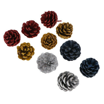 10Pcs Colorful Large Pine Cones In Bulk For Accents Decoration Ornament