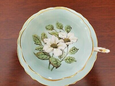 Paragon White Daisys And Green Leaves On Pale blue Teacup And Saucer
