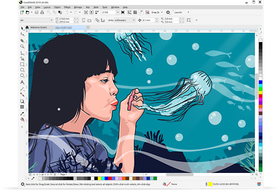 CorelDRAW Graphics Suite 2019 🔑Full Activated 🔑Windows 🔥FAST DELIVERY
