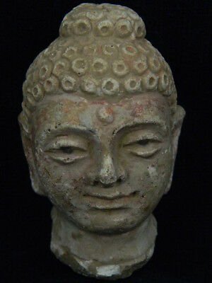 Ancient Stucco Buddha Head Gandhara/Gandharan 200 AD #STC5424