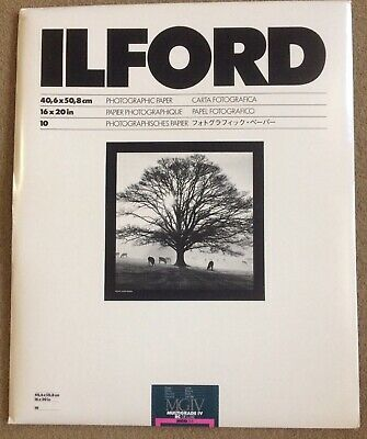 Ilford MGIV Multigrade IV RC DeLuxe Glossy 16x20 Photo Paper 10 Sheets