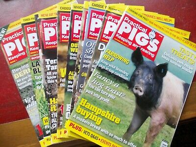 Practical Pigs Magazine first 12 issues