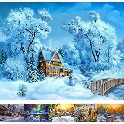 Pre-printed Paint By Number Kit DIY Acrylic Oil Painting On Canvas Home Decor AU