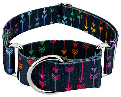 Country Brook Petz® 2 Inch Martingale Dog Collar