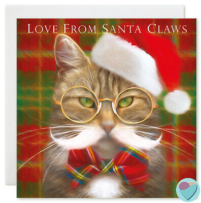 Kitten Christmas Cards.Christmas Cards Tabby Cats Kitten For Family And Friends To From The Cat Lover