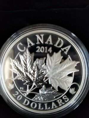 2014 'Majestic Maple Leaves' Proof $20 Silver Coin 1oz .9999 Fine NEW Canadian