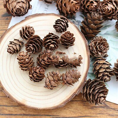 100Pcs Natural Dried Pine Cones Mini Size for Vase Filler Crafting Decoration