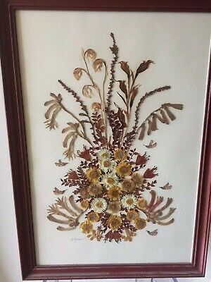 Vintage Pressed Dried Flowers In Glass Frame Artistic S,Maxwell