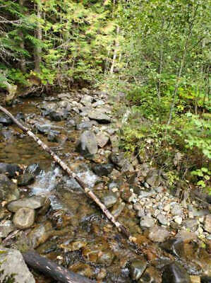 GOLD MINE Historic Troy MT Whiskey Gulch Placer 20 Acre Gold Mining Claim