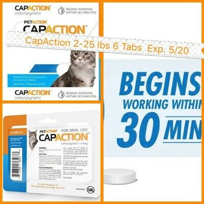 🐾PetAction CapAction 6 tabs for Cats 2-25lbs Flea Treatment  Exp.10/20🐾