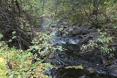 Oregon Gold Mine Prime Mining Claim Silver Lode Ag Au Granite Boulder Creek