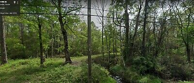 1.90 Acres in Jacksonville, Florida: Quiet & Secluded- Directly Borders a Creek!