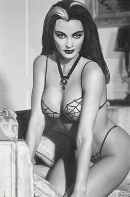 Vintage Lily Munster Pin Up Photo 55 Oddleys Strange & Bizarre 4 x 6